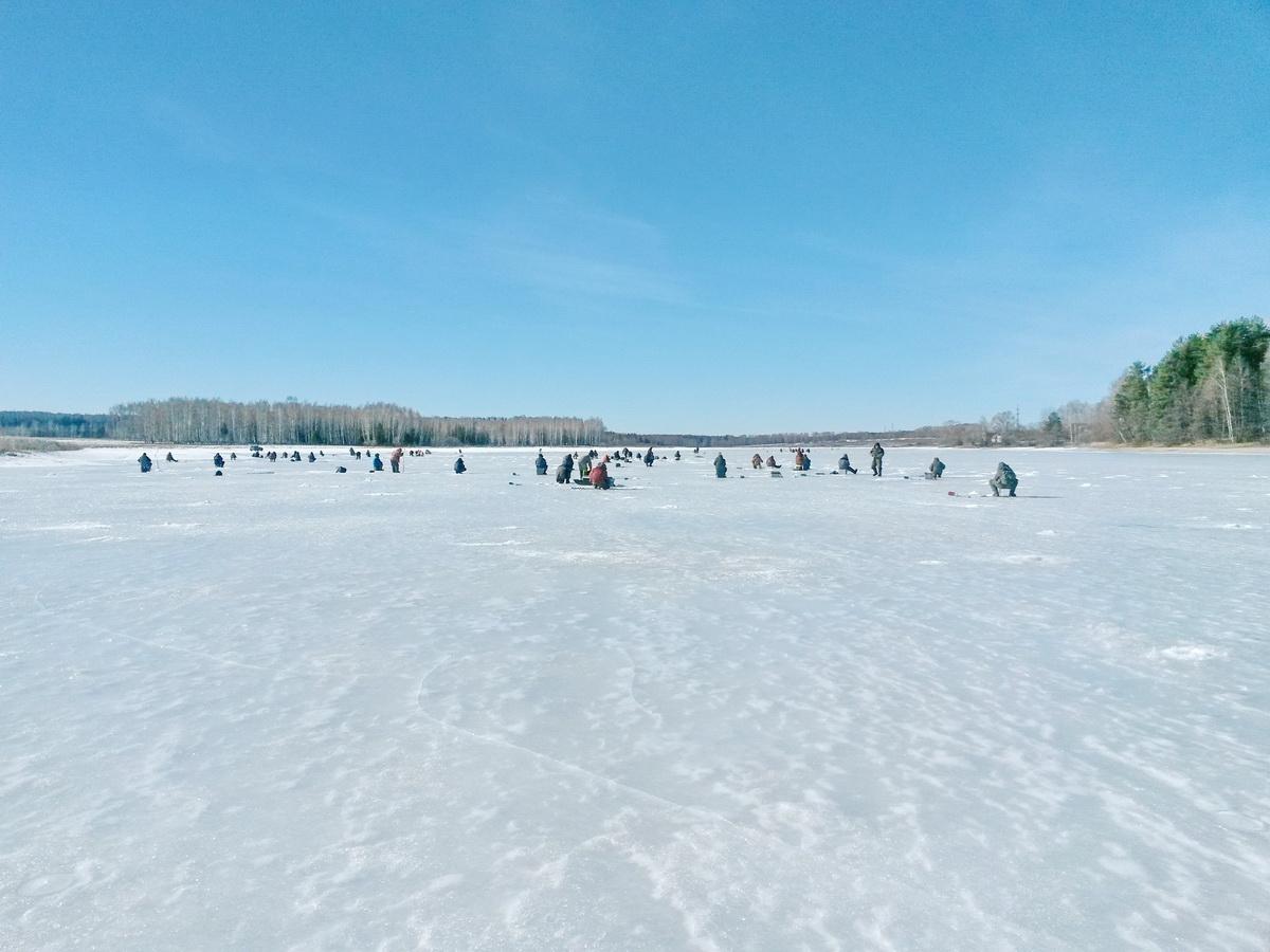рыбалка у берега поселка