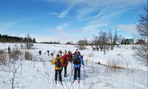 лыжные-прогулки